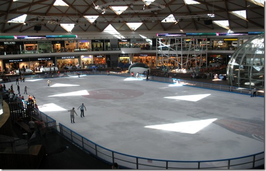 new shoping mall and ice ring article