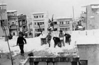 snow 1950